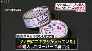 ツナ缶にゴキブリ_日テレNEWS24.jpg