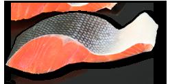 鮭切り身.png
